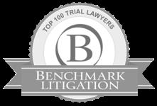 BADGE_Benchmark-Top-100